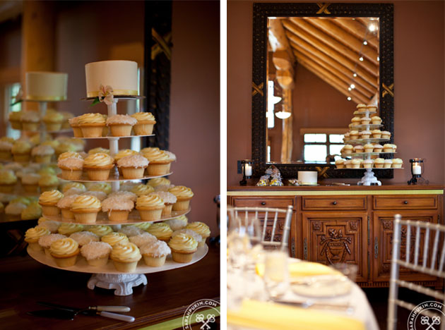 buffalo mountain lodge wedding_cupcakes